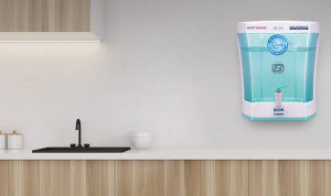 What type of water purifier is ideal for you