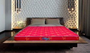 Shagun Single Size Foam Mattress