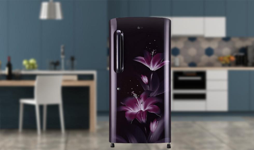LG 215 L 4-Star Inverter Direct Cool Single Door Refrigerator