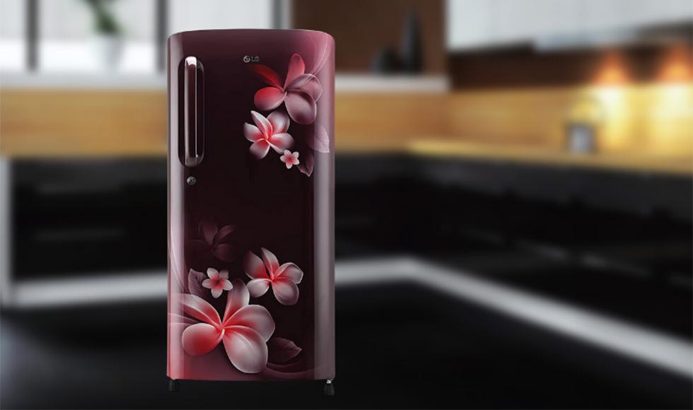 LG 190 L 4 Star Inverter Direct-Cool Single Door Refrigerator